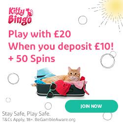kitty bingo review